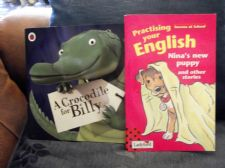 2 X CHILDRENS LADYBIRD BOOKS NINA'S NEW PUPPY & CROCODILE FOR BILLY CONDITION